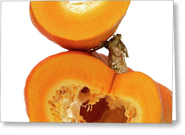Pumpkins Greeting Card by Bernard Jaubert