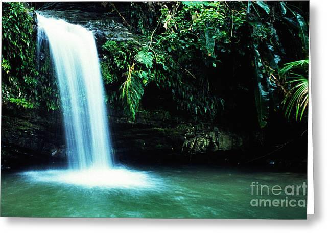 Puerto Rico Greeting Cards - Quebrada Juan Diego Waterfall Greeting Card by Thomas R Fletcher