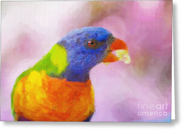 Rainbow Lorikeets Greeting Cards - Rainbow lorikeet Greeting Card by Sheila Smart