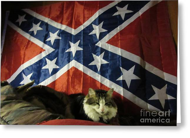 Confederate Flag Greeting Cards - Rebel Cat Greeting Card by Frederick Holiday