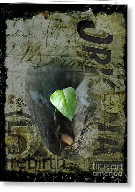 Calligraphy Print Mixed Media Greeting Cards - ReBirth Greeting Card by Anahi DeCanio