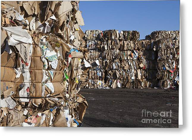 Best Sellers -  - Cardboard Greeting Cards - Recycling Facility Greeting Card by Paul Edmondson