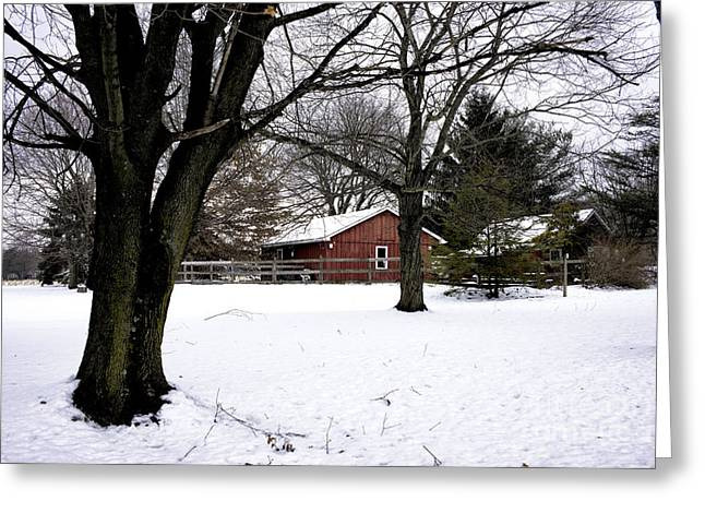 Red Barn Prints Greeting Cards - Red Barn in Winter Greeting Card by John Rizzuto