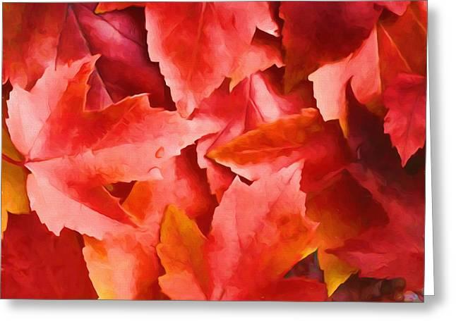Red Leaves Greeting Card by Veikko Suikkanen