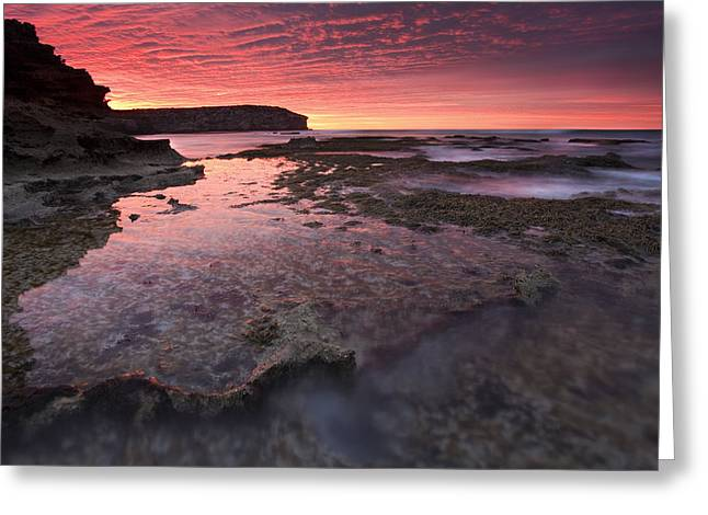 Sunrise Greeting Cards - Red Sky At Morning Greeting Card by Mike  Dawson