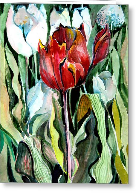 Spring Bulbs Drawings Greeting Cards - Red Tulip Greeting Card by Mindy Newman