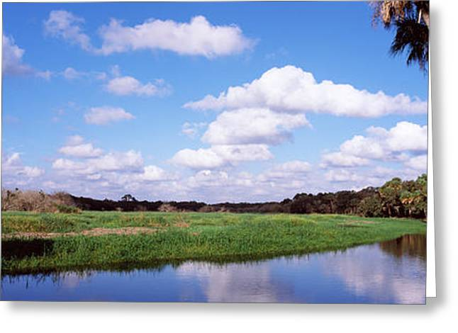 Florida State Parks Greeting Cards - Reflection Of Clouds In A River, Myakka Greeting Card by Panoramic Images