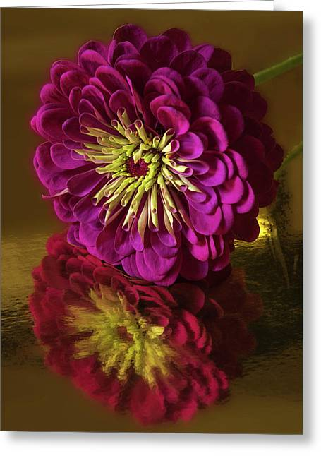 Reflections Greeting Card by Don Spenner