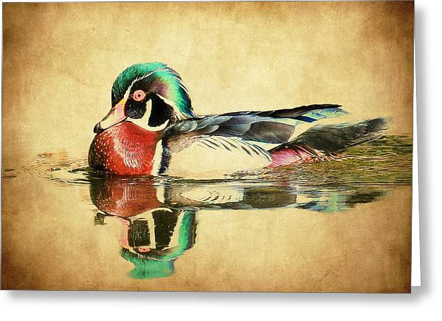 Hunting Bird Greeting Cards - Reflections Greeting Card by Steve McKinzie