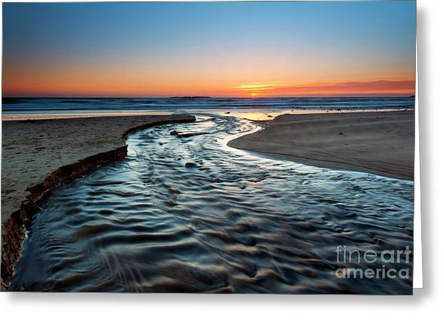 Return To The Sea Greeting Card by Mike Dawson