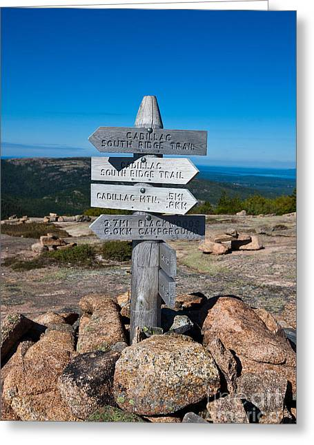 Directional Signage. Greeting Cards - Ridge Trail Signpost Acadia National Park Greeting Card by Jason O Watson