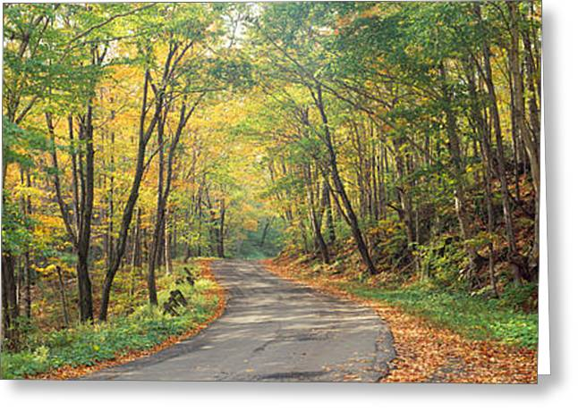 Fall Colors Greeting Cards - Road Passing Through Autumn Forest Greeting Card by Panoramic Images