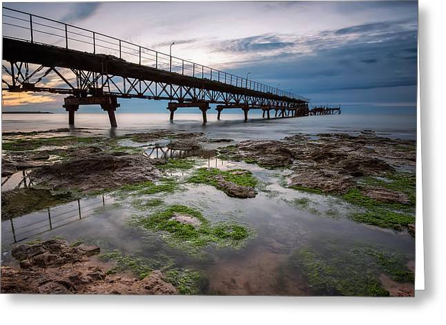 Algae Greeting Cards - Rocky beach at sunrise Greeting Card by Evgeni Ivanov