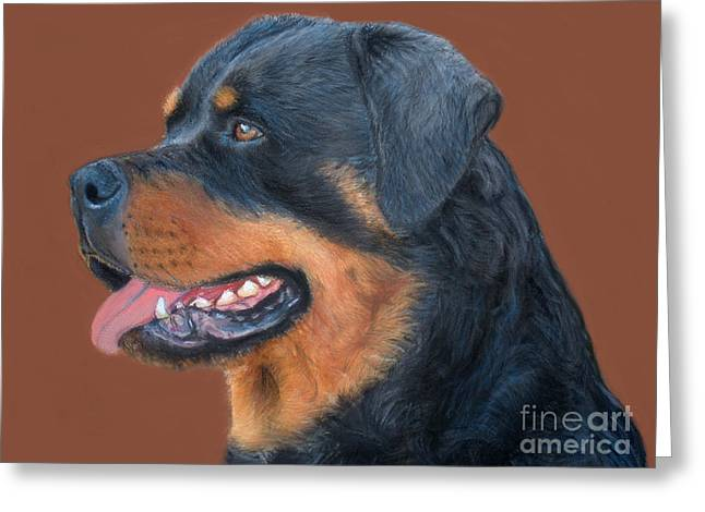 Breeds Pastels Greeting Cards - Rottweiler Greeting Card by Peter Flint