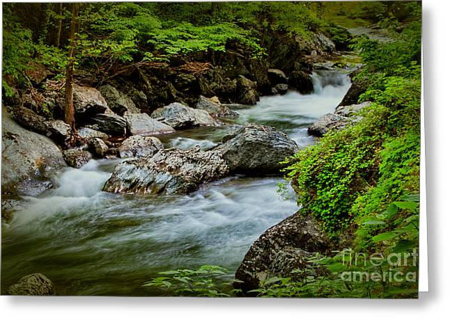 Unique Art Greeting Cards - Rushing Waters Greeting Card by Dave Bosse