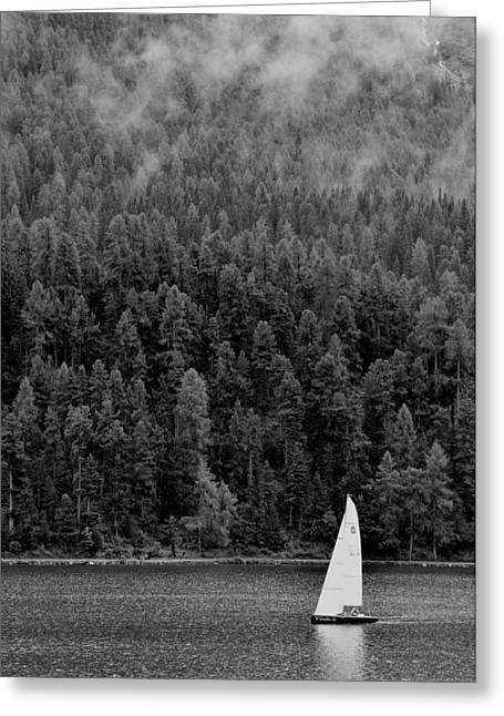 Sailboats In Water Greeting Cards - Sail Away Greeting Card by Shawn Dechant