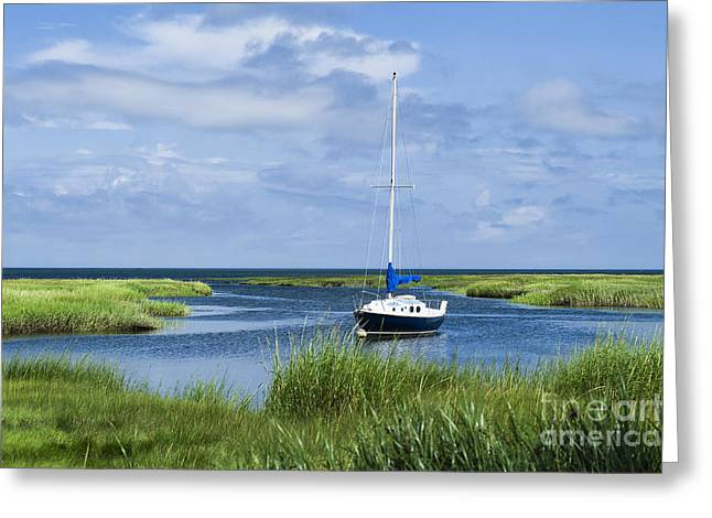 Cape Cod Bay Greeting Cards - Sailboat Salt Marsh Greeting Card by John Greim