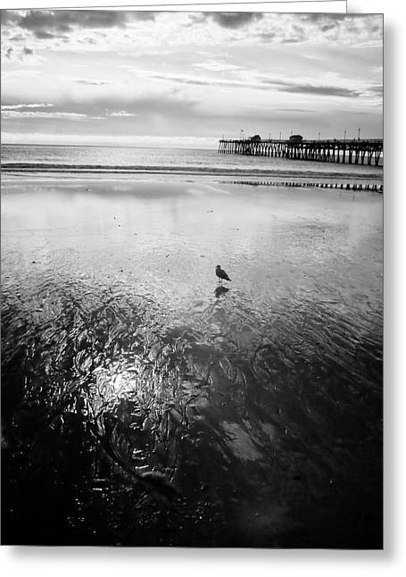 San Clemente Pier Greeting Card by G Wigler