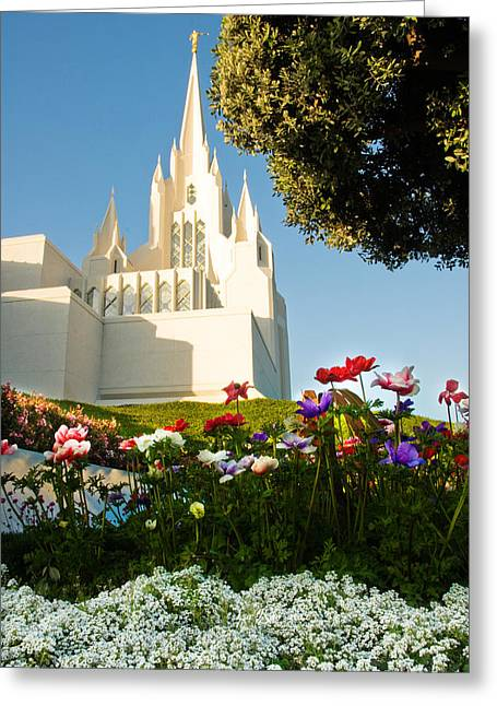 Mormon Temple Photography Greeting Cards - San Diego Flowers Greeting Card by La Rae  Roberts