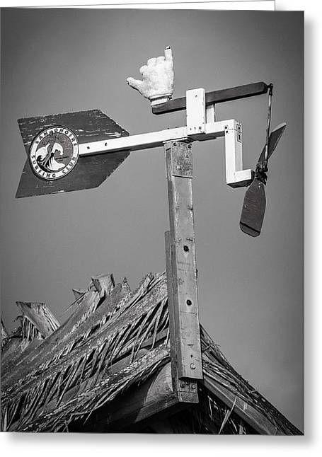 Clemente Greeting Cards - San Onofre Surfing Club Greeting Card by Richard Cheski