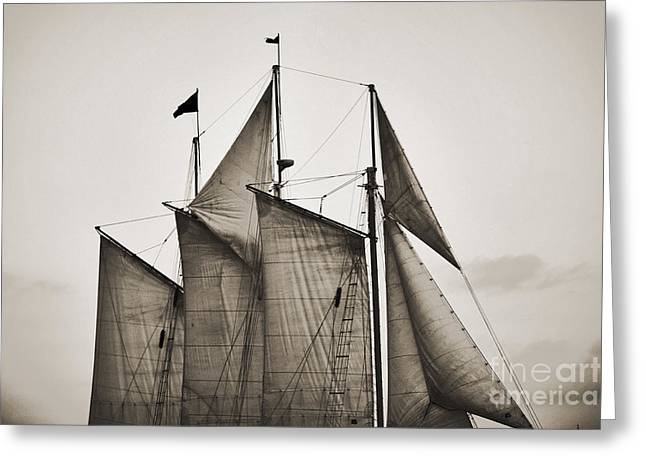 Schooner Digital Greeting Cards - Schooner Pride Tall Ship Charleston SC Greeting Card by Dustin K Ryan