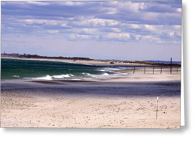 Scusset Beach. Greeting Cards - Scusset Beach Greeting Card by Mike Poland