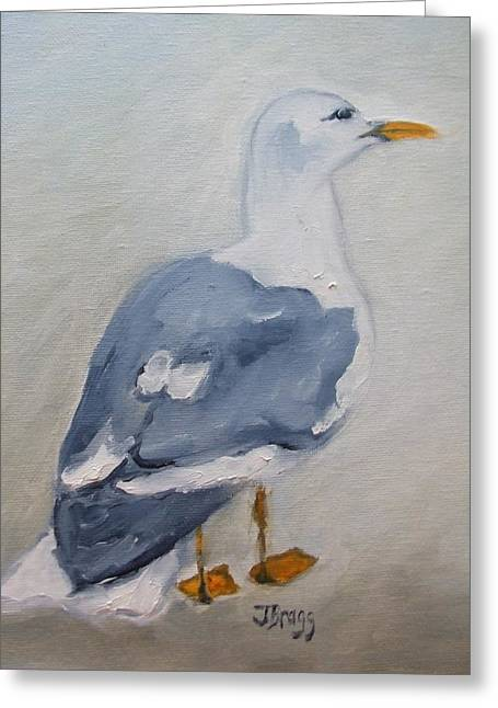 Water Fowl Mixed Media Greeting Cards - Seagull Greeting Card by Janel Bragg