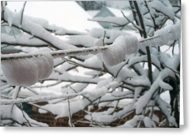 Snow Reliefs Greeting Cards - Second Day Of Spring Greeting Card by Suhas Tavkar