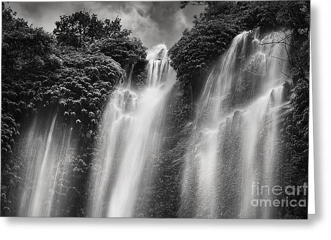 White And Black Waterfalls Greeting Cards - Sekumpul Waterfall Greeting Card by Rod McLean