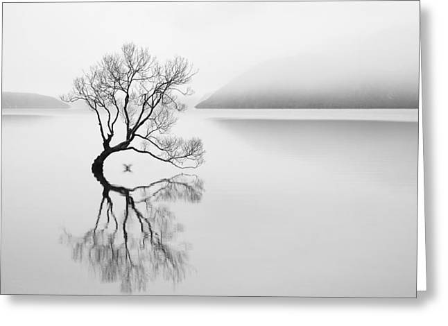 Serenity Greeting Card by Neville Jones