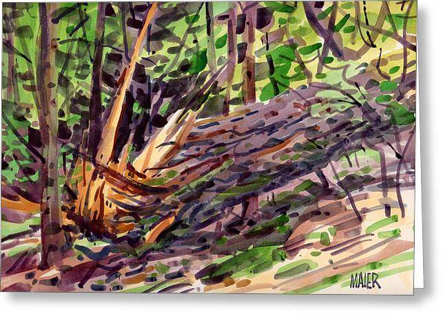 Strike Paintings Greeting Cards - Shattered Pine Greeting Card by Donald Maier