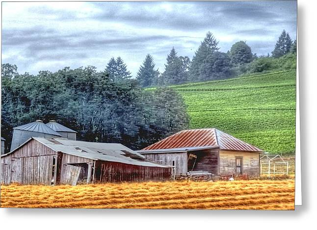 Sheds Greeting Cards - Shed and Grain Bins 17238 Greeting Card by Jerry Sodorff