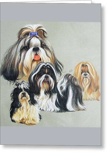 Toy Dog Greeting Cards - Shih Tzus Greeting Card by Barbara Keith