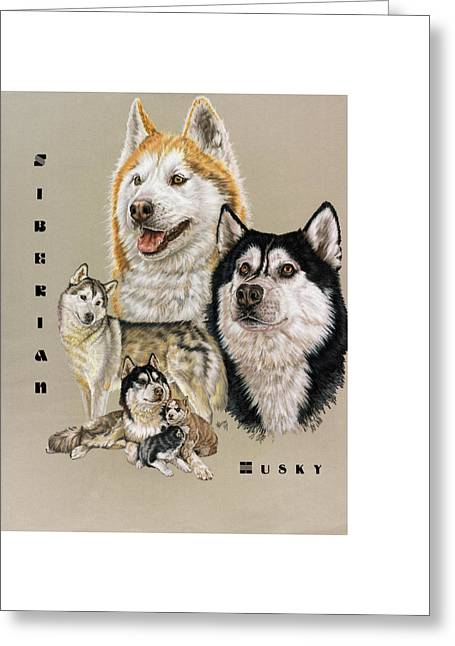 Working Dog Greeting Cards - Siberian Husky Greeting Card by Barbara Keith