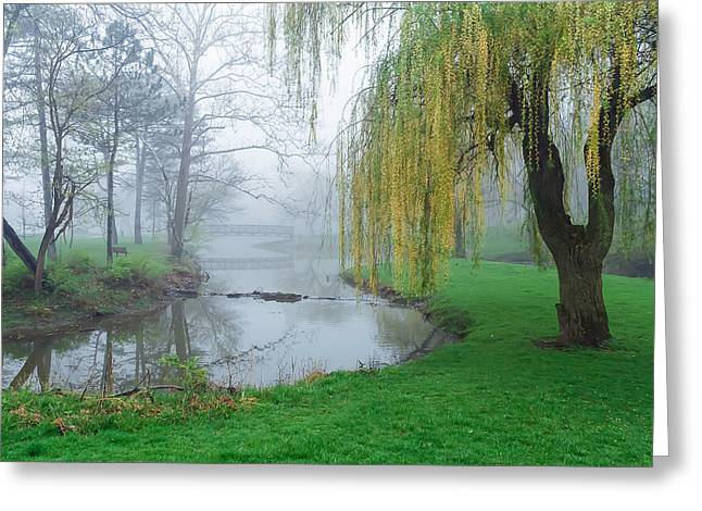 Willow Lake Greeting Cards - Silver Lake Fog Greeting Card by Jerry Lohman