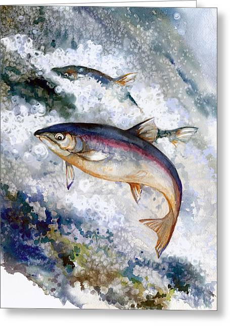 Salmon Paintings Greeting Cards - Silver Salmon Greeting Card by Peggy Wilson