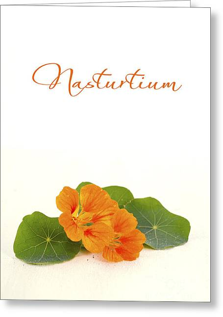 Tabletop Greeting Cards - Small bouquet of edible nasturtium flowers  Greeting Card by Milleflore Images