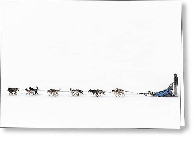 Snowbound Greeting Card by Evelina Kremsdorf