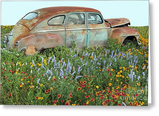 Photography By Joe Jake Pratt Greeting Cards - Softly Fading Away Greeting Card by Joe Jake Pratt
