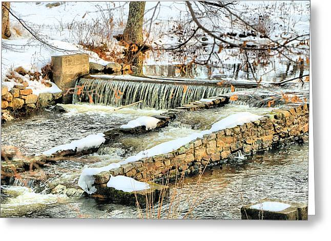 Somesville Brook Greeting Card by Elizabeth Dow