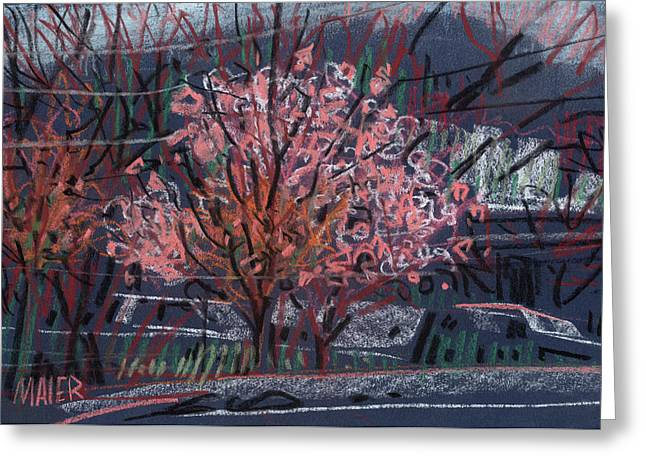 Cherry Blossoms Paintings Greeting Cards - Spring is Here Greeting Card by Donald Maier