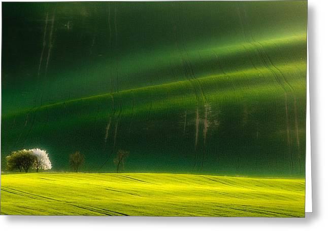 Spring Time Greeting Card by Piotr Krol (bax)
