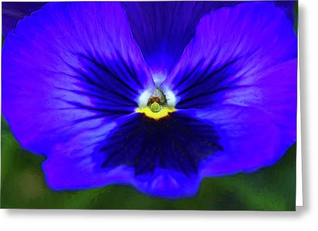Springtime Blues - Paint Greeting Card by Steve Harrington