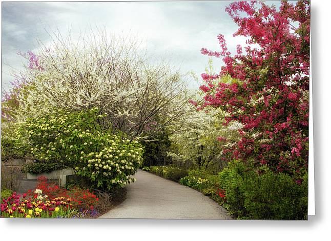 Tulip Tree Greeting Cards - Springtime Greeting Card by Jessica Jenney