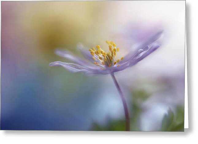 Macro Greeting Cards - Springtime Watercolor Greeting Card by Heidi Westum