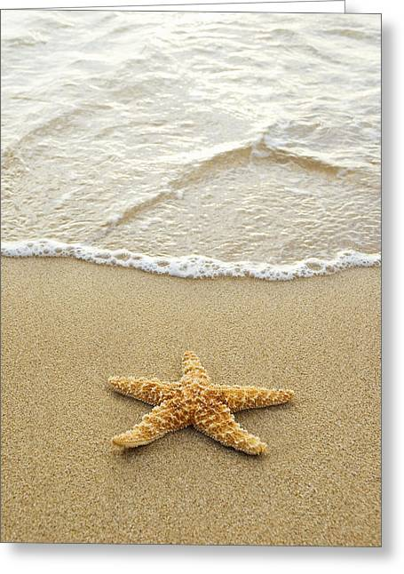 Sea Creature Photos Greeting Cards - Starfish on Beach Greeting Card by Mary Van de Ven - Printscapes