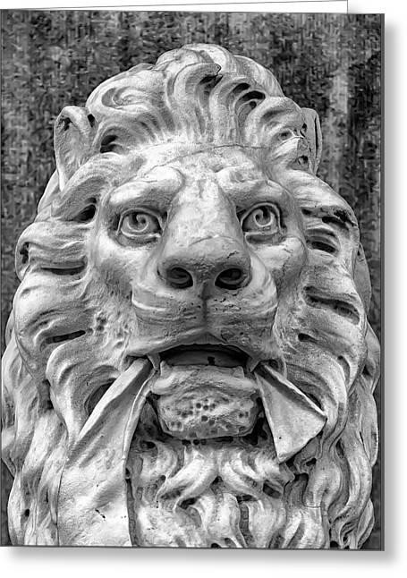 Stone Lion Greeting Card by Robert Ullmann