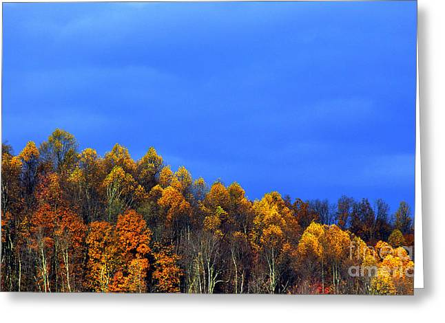Approaching Storm Greeting Cards - Stormy Sky Last Fall Color Greeting Card by Thomas R Fletcher