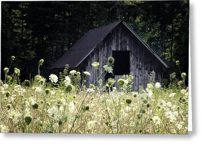 Summer Barn Greeting Card by Rob Travis