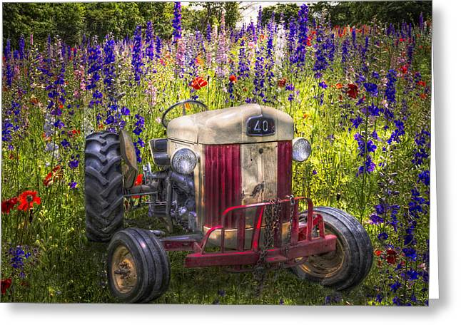 Larkspur Greeting Cards - Summer Fields Greeting Card by Debra and Dave Vanderlaan
